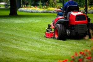 lawn maintenance st louis