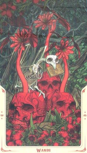 3 Жезлов Таро святой смерти (Santa Muerte Tarot)