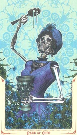 паж Кубков Таро святой смерти (Santa Muerte Tarot)
