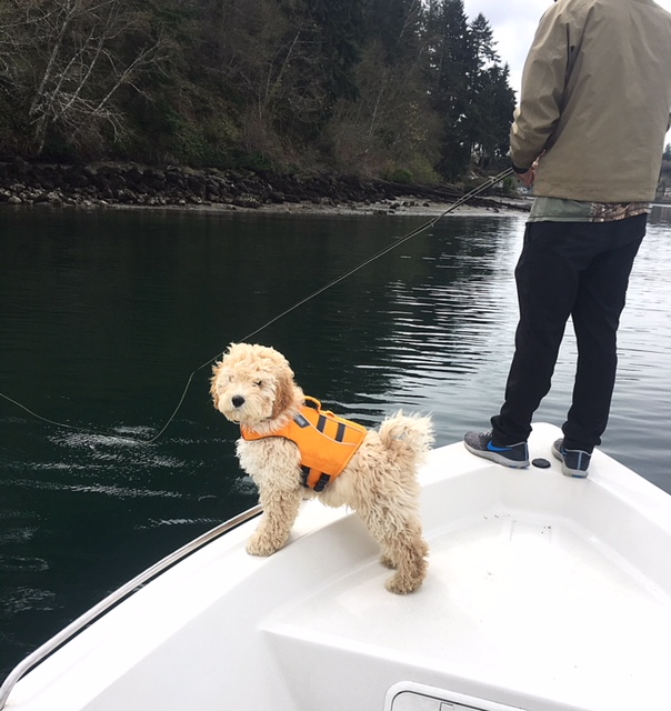 Fishing Report 4/4/2018