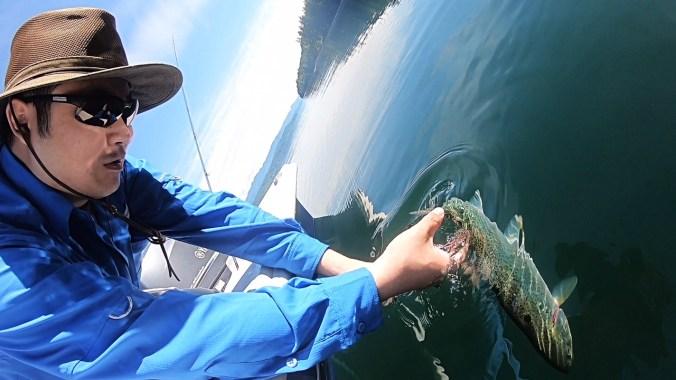 Slack Tide Release