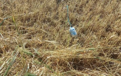 צרור בלונים עם חפץ חשוד אותר בשטח פתוח מחוץ לישוב באשכול