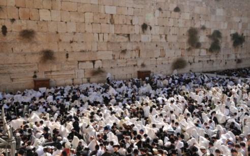 שידור חי: רבבות עם ישראל ומאות כוהנים מעוטרים בטליתות מברכים את עם ישראל בכותל המערבי