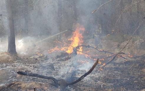 גל השריפות: לוחמי האש פועלים במספר ישובים בארץ בסיוע מטוסי כיבוי