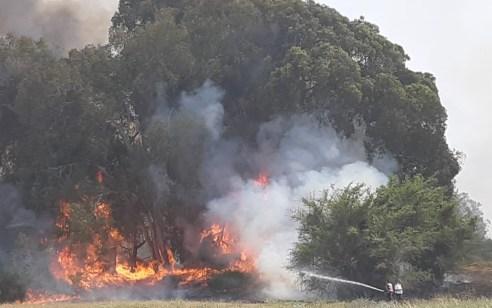 בזמן בו כל הכוחות עסקו בטיפול בשריפות ברחבי הארץ – נעצרו 3 ערבים ממזרח ירושלים בנסיונות הצתה באזור ירושלים