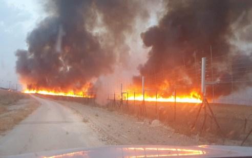 בן 3 נספה בשריפה, הצתות נוספות ברחבי הארץ – סיכום חדשות השבת