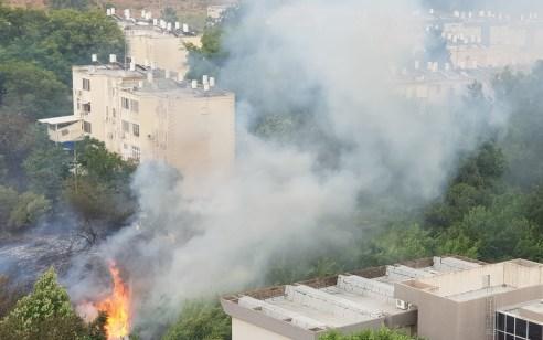 בתים פונו בשריפת קוצים בקרית שמונה