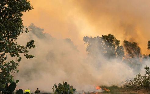 טרור הבלונים: 6 שריפות שנגרמו מבלונים פרצו בעוטף עזה
