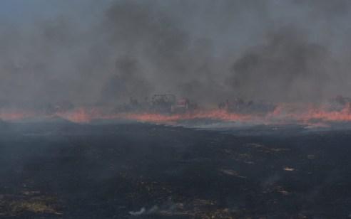 המתיחות בדרום: 10 שריפות פרצו בעוטף – 46 מחבלים נפצעו בהתפרעויות בגדר