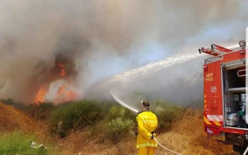 כוחות כיבוי גדולים פועלים לכיבוי שריפת קוצים גדולה באזור נחל לכיש