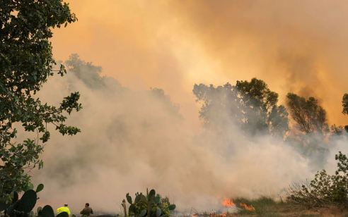 טרור הבלונים: שריפה פרצה בשדות נגב – חוקר שריפות קבע שנגרמה מבלון תבערה