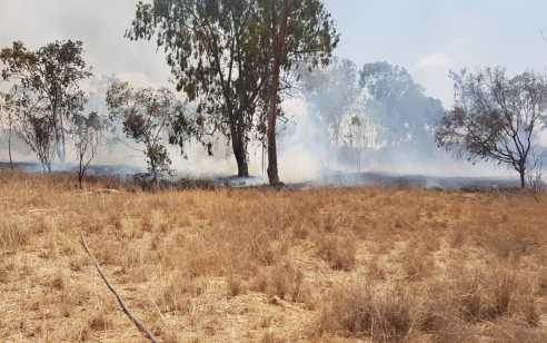 בכבאות והצלה מאשרים: שריפה שפרצה ביער שמחוני נגרמה מבלון תבערה