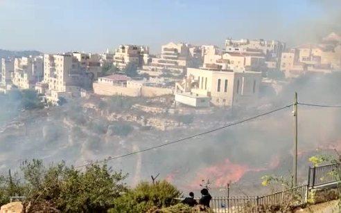שריפה פרצה בשטח חקלאי בביתר עילית: 2 סוכות עלו באש – מספר רחובות נסגרו ובוצע ניתוק לחשמל | תיעוד
