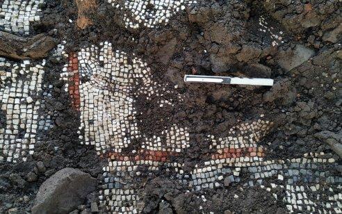 נחשף פסיפס נדיר בבית כנסת מהתקופה הרומית בגולן