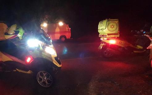 רוכב אופנוע בן 28 התנגש בצבי בכביש 899 סמוך לגורן – מצבו בינוני