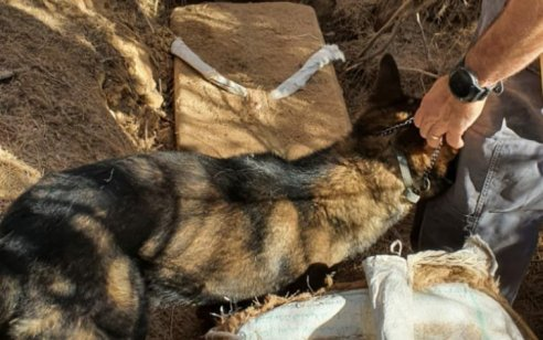 חמישה ארגזים של סמים שהוברחו מגבול מצרים נתפסו בשטחים החקלאיים של רמת נגב