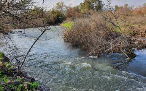 בשל זיהום במים: הכניסה לנחלים זאכי, אלעל, ג'ילבון, מג'רסה ובריכת המשושים שבצפון עלולה להיות מסוכנת
