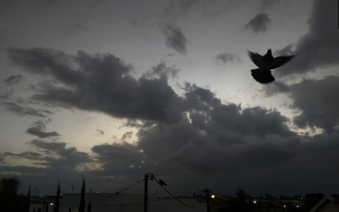 גשמים מקומיים בעיקר בצפון הארץ ובמישור החוף – בשבת: התחממות | התחזית המלאה