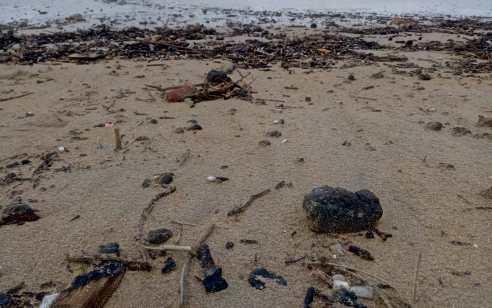 צוות חוקרים נשלח לביקורת ביוון על מנת לבדוק את האוניה החשודה באסון הזפת