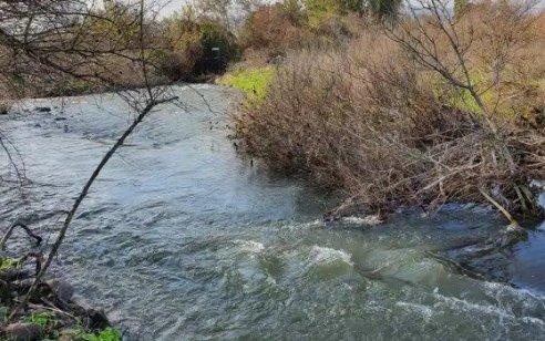 משרדי הבריאות והסביבה: אלו הנחלים המסוכנים לרחצה