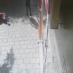 """בתום חקירה מואצת: הצהרת תובע נגד תושב ת""""א ששדד באלימות קשישה בלב העיר   תיעוד"""