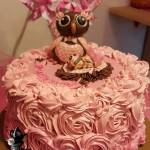 Fondant Owl and Baby Girl Toppers on Pink Ombre Buttercream Rosette Baby Shower Special Occasion Cake Roses by All4Fun Cakes LLC