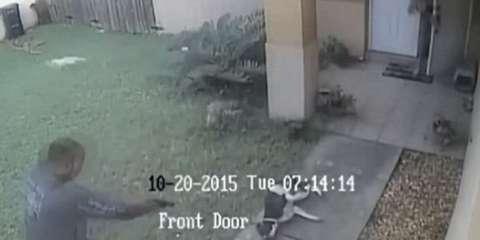 Αστυνομικός πυροβολεί το σκύλο οικογένειας επειδή νόμιζε πως του επιτέθηκε
