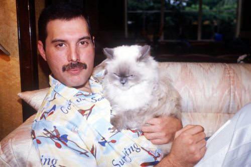 Freddie Mercury Φρέντι Μέρκιουρι
