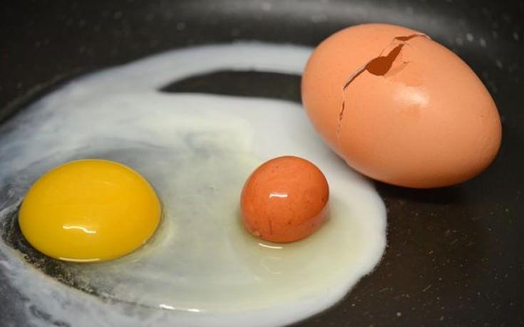 Έσπασε ένα αυγό και δεν βρήκε μέσα μόνο τον κρόκο