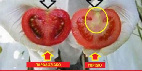 πως θα ΞEΧΩΡIΖEΤE τα ΜEΤAΛΛAΓΜEΝA φρούτα και λαχανικά