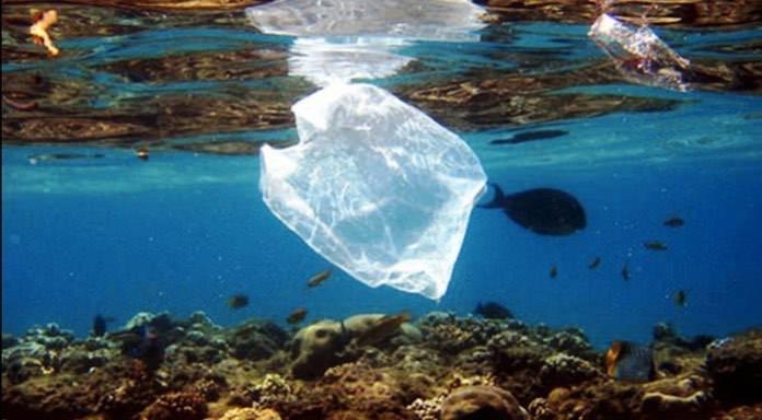 Σίφνος καταργεί μόνιμα την πλαστική σακούλα
