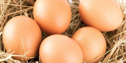 dite-pos-ftiachnoun-tin-omeleta-i-iapones1 (700 x 466)