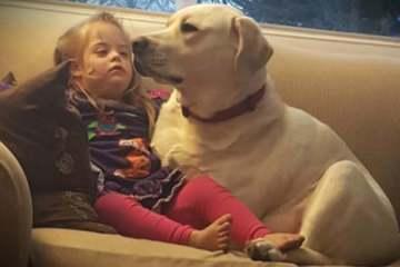 Όταν ο σκύλος τους το έκανε αυτό έμειναν έκπληκτοι. Σή