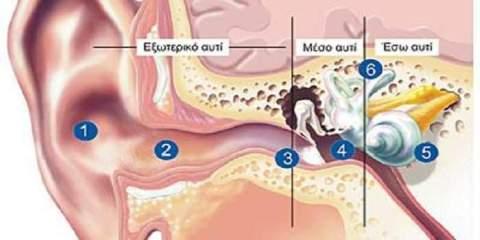 γιατροσόφι για την μόλυνση στα αυτιά