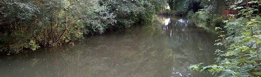 angling on the Basingstoke Canal