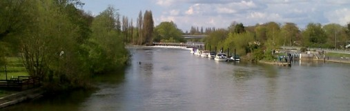 A view across the Thames in Chertsey where river angling is available
