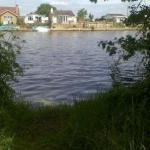 A swim on Walton Lane