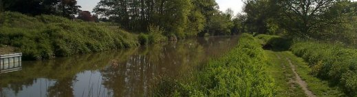 A view of the Wey Navigation at Send, where angling is permitted, on a summer afternoon