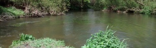A view downstream of the River Mole at Fetcham splash on a bright day