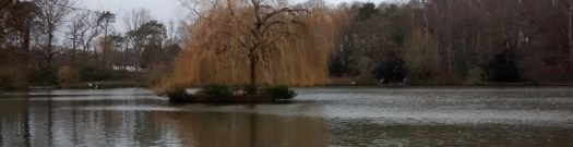 A view of a fishing venue in Guildford, Brittens Pond, on a cloudy winters day, with an island in the centre of the picture