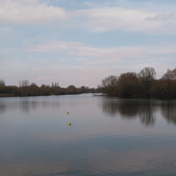 Looking across Beomonds angling lake at Chertsey