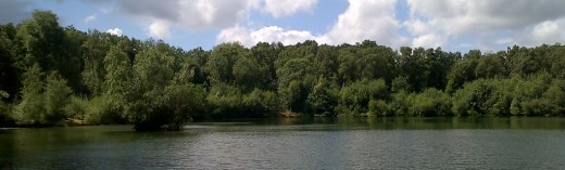 A view across a Surrey carp fishing venue on a summer afternoon.