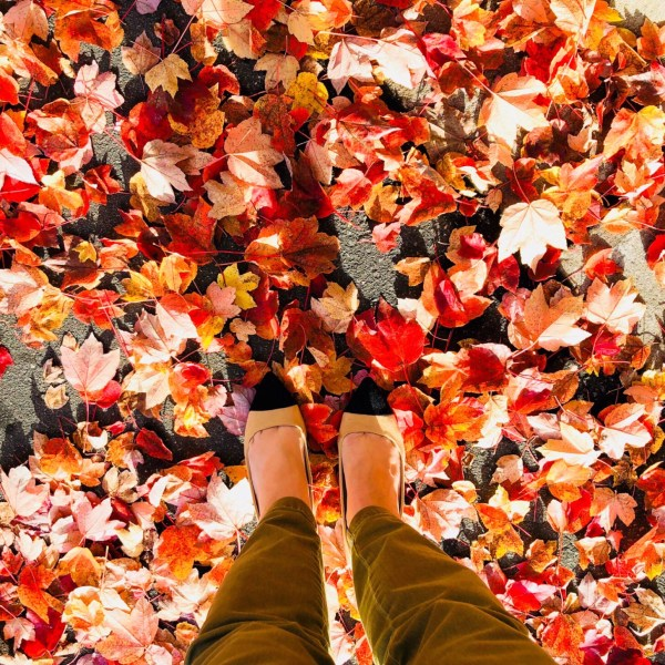 5 Ways To Get In The Fall Mood When It's Still Hot Outside