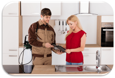 All About Bugs TN, Pest and Termite Control in Sevierville, Tennessee 37876