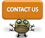 Contact All About Bugs TN for a Free Quote