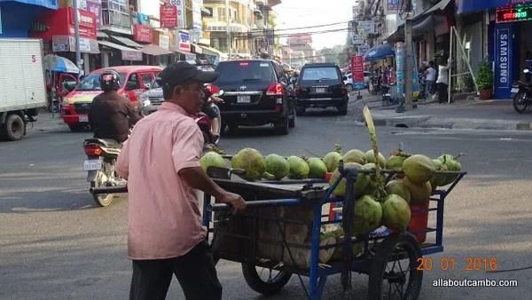 кокосы в камбодже