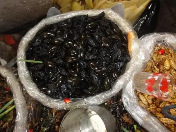 в камбодже едят жуков
