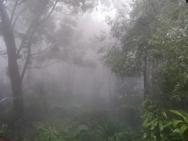дождь на плато болавен