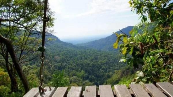 Полет над джунглями в Лаосе