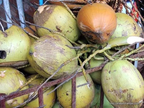 кокосы камбоджа